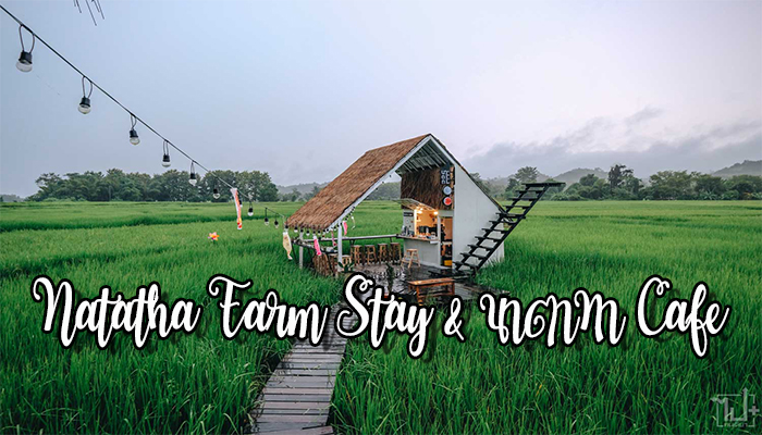 Natatha Farm Stay & นาตาทา Cafe